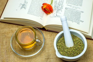 Zistrose, Teezubereitung mit Kräuterbuch